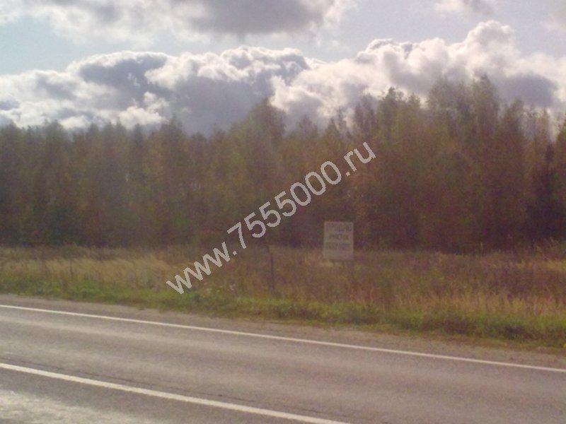 проститутки таллинское шоссе